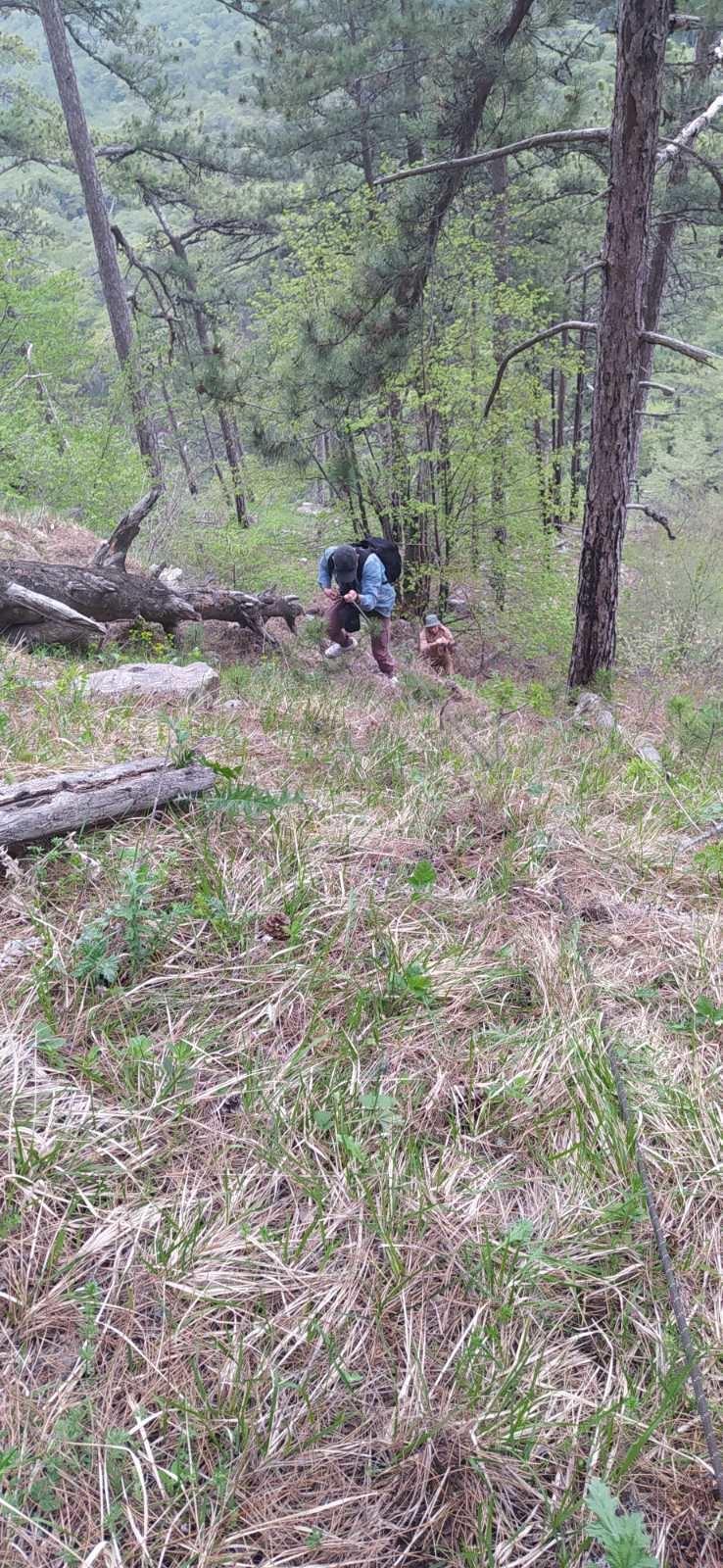 Оказание помощи в горно-лесной местности ГО Ялта